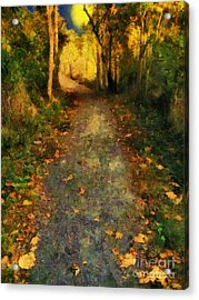 Washed In Gold Acrylic Print