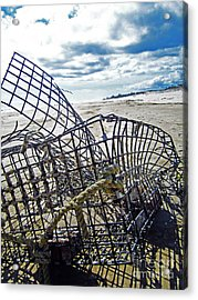 Washed Up Acrylic Print by Alison Tomich