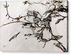 Washed-up Art-  12 Acrylic Print