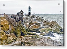 Washed Up Acrylic Print by John Collins