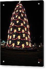 Washington Dc - Christmas At The Ellipse - 12121 Acrylic Print by DC Photographer