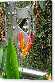 Washington Dc - Us Botanic Garden. - 121222 Acrylic Print