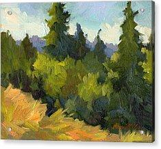 Washington Evergreens Acrylic Print by Diane McClary