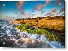 Washington Oaks State Park Coquina Rocks Beach St. Augustine Fl Beaches Acrylic Print by Dave Allen