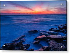Washington Oaks Twilight Acrylic Print