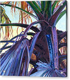 Washingtonia Acrylic Print