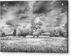 Washita Acrylic Print by Harry H Hicklin