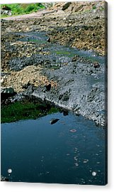 Waste Oil On A Landfill Site Acrylic Print