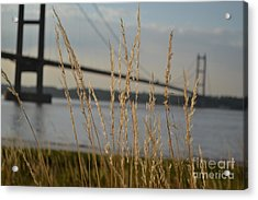 Wasting Time By The Humber Acrylic Print