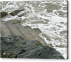 Acrylic Print featuring the photograph Watch Your Step by Brenda Brown