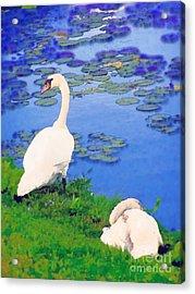 Watchful Acrylic Print