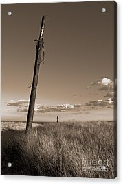 Watching Over The Sea King Acrylic Print by Mark Miller