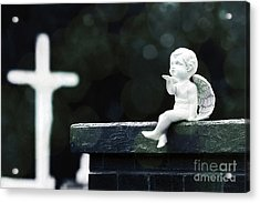 Watching Over Them Acrylic Print by Trish Mistric