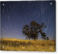 Watching Polaris Acrylic Print