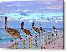 Watching The Ocean Acrylic Print