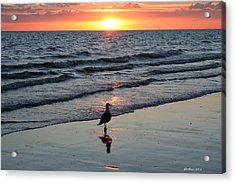 Watching The Sun Rise Acrylic Print