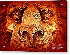 Watching You Acrylic Print by Clare Bevan