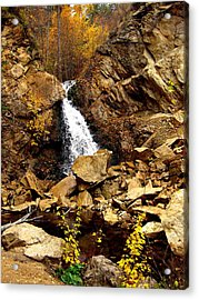 Water Always Gets Through Acrylic Print by Kathy Bassett