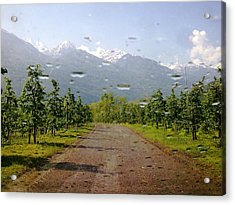 Acrylic Print featuring the photograph Water And Apple Juice by Giuseppe Epifani