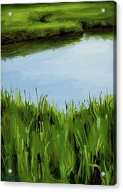 Water And Grass Swirl Acrylic Print