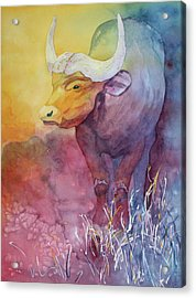 Acrylic Print featuring the painting Water Buffalo by Nancy Jolley