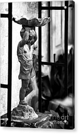 Water Carrier In The Garden Acrylic Print by John Rizzuto