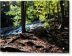 Water Cascades Down A Forested Slope Acrylic Print by Robbie George