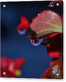 Water Coloured Rhapsody Acrylic Print by Marija Djedovic