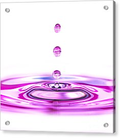 Water Droplets White And Purple Acrylic Print by Sabine Jacobs