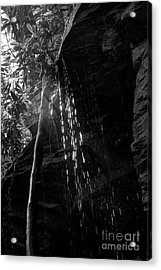 Water Drops After Storm Acrylic Print by Dan Friend