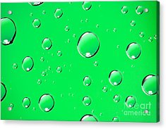 Water Drops On Green Acrylic Print by Sharon Dominick