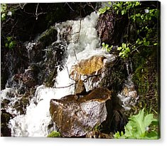 Water Fall Acrylic Print by Yvette Pichette