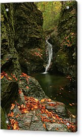 Water Falls As Autumn Starts Acrylic Print by Karol Livote