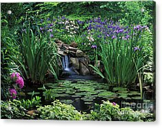Water Feature - Fs000150 Acrylic Print