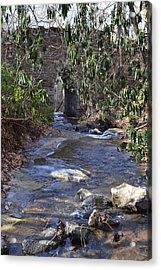 Water Flow To Poinsett Acrylic Print