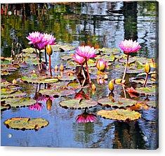 Water Flower 1002 Acrylic Print by Marty Koch