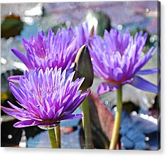 Acrylic Print featuring the photograph Water Flower 1006 by Marty Koch