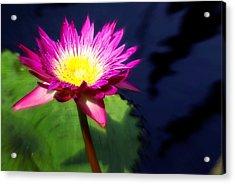 Water Flower Acrylic Print by Marty Koch