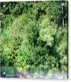 Water Forest Acrylic Print by Stanislav Killer