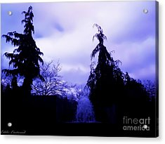 Water Fountain At Alderwood Business Center In Lynnwood Washington Acrylic Print by Eddie Eastwood