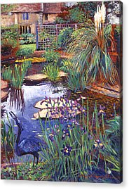 Water Garden Acrylic Print by David Lloyd Glover