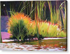 Water Garden Landscape 3 Acrylic Print by Melody Cleary