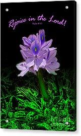 Water Hyacinth - Psalm 97 Acrylic Print