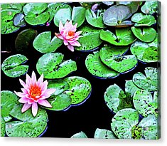 Water Lillies -- Inspired By Monet-1 Acrylic Print