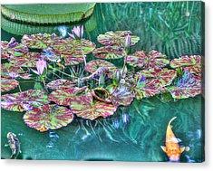 Flower 12 Acrylic Print