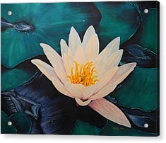 Water Lily Acrylic Print by Adel Nemeth