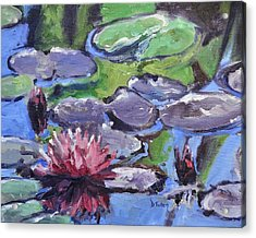 Water Lily Acrylic Print by Donna Tuten