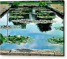Acrylic Print featuring the photograph Water Lily Garden by Zafer Gurel