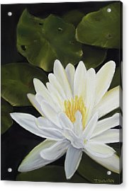 Water Lily Acrylic Print by Joan Swanson