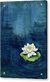 Acrylic Print featuring the painting Water Lily by Katherine Miller